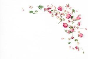 Τριαντάφυλλα, Vintage, Image Gallery