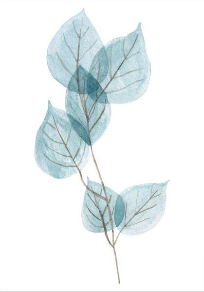 Κλαδί με φύλλα