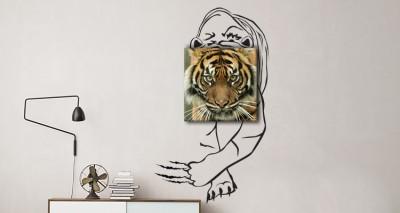 Τίγρης, Διάφορα, Πίνακες και αυτοκόλλητα