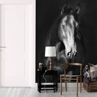 Μαύρο άλογο kladruby, Ζώα, Ταπετσαρίες Τοίχου