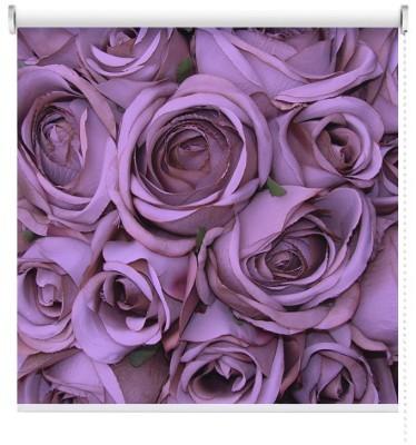 Τριαντάφυλλα, Φύση, Ρολοκουρτίνες