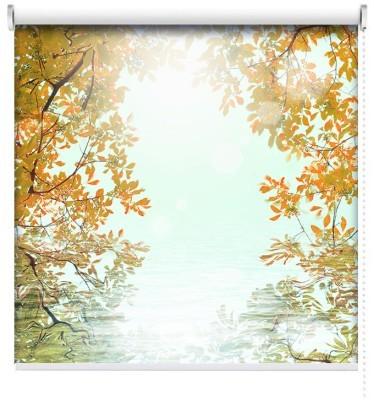 Φύλλα του φθινοπώρου