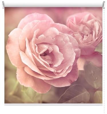 Ροζ Τριαντάφυλλα Vintage Ρολοκουρτίνες 100 x 100 cm