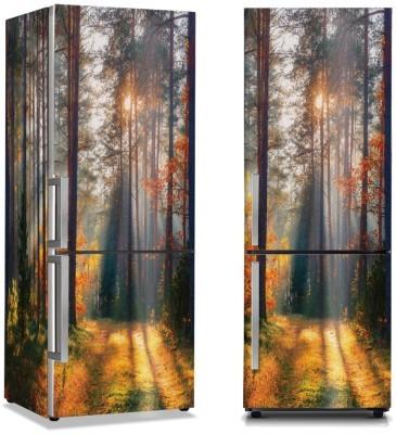 Ακτίνες ήλιου ανάμεσα στα δέντρα Φύση Αυτοκόλλητα ψυγείου 50 x 85 εκ.
