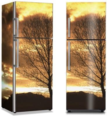 Γυμνό δέντρο Φύση Αυτοκόλλητα ψυγείου 50 x 85 εκ.