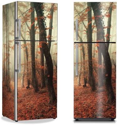 Μυστηριώδες δάσος Φύση Αυτοκόλλητα ψυγείου 50 x 85 εκ.