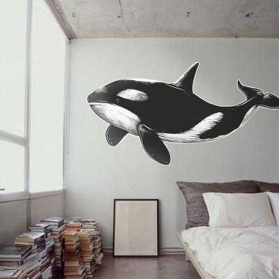 Φάλαινα όρκα Ζώα Αυτοκόλλητα τοίχου 80 x 40 εκ.