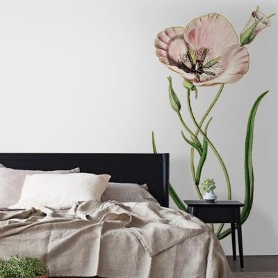 Παπαρούνα, Δέντρα - Λουλούδια, Αυτοκόλλητα τοίχου
