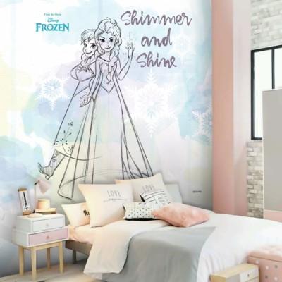 Shine, Frozen Παιδικά Ταπετσαρίες Τοίχου 100 x 100 εκ.