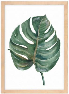 Πράσινο τροπικό φύλλο Φύση Πίνακες σε καμβά 20 x 30 εκ.