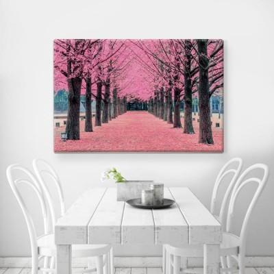 Ροζ δέντρα