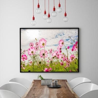 Ροζ Λουλούδια