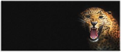 Τίγρης!, Ζώα, Πίνακες σε καμβά