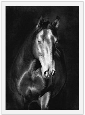 Μαύρο άλογο kladruby, Ζώα, Πίνακες σε καμβά