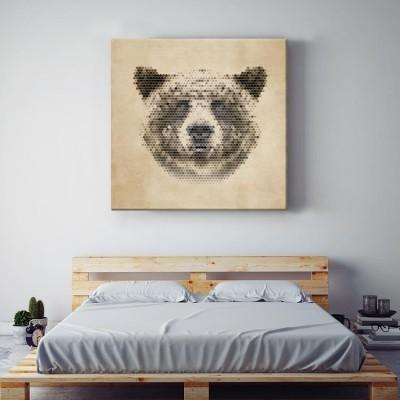 Αρκούδα Ζώα Πίνακες σε καμβά 52 x 49 cm