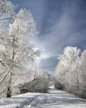 Χιονισμένο μονοπατι