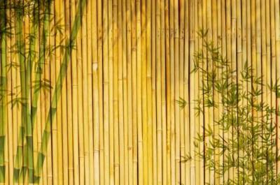 Τοίχος από μπαμπού