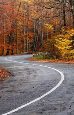 Στροφή δρόμου σε δάσος, φθινόπωρο