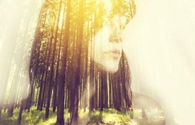 Μητέρα Φύση, Φύση, Image Gallery