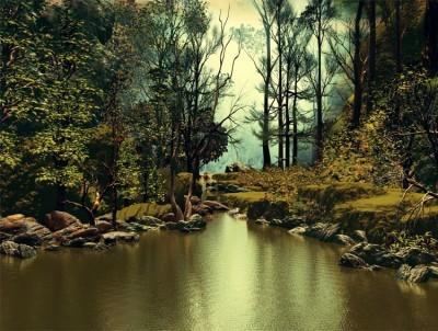 Άγρια Φύση, Φύση, Image Gallery