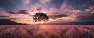 Ηλιοβασίλεμα στην Φύση, Φύση, Image Gallery