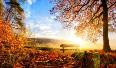 Φθινόπωρινο τοπίο
