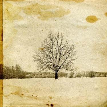 Δένδρο πάνω σε παλαιωμένο χαρτί