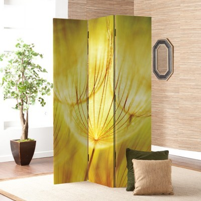 Κίτρινη πικραλίδα, Φύση, Παραβάν