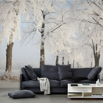 Παγωμένα δένδρα Φύση Ταπετσαρίες Τοίχου 100 x 100 εκ.