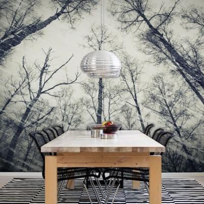 Μάυρα δέντρα, σκούρο φόντο Φύση Ταπετσαρίες Τοίχου 100 x 100 εκ.